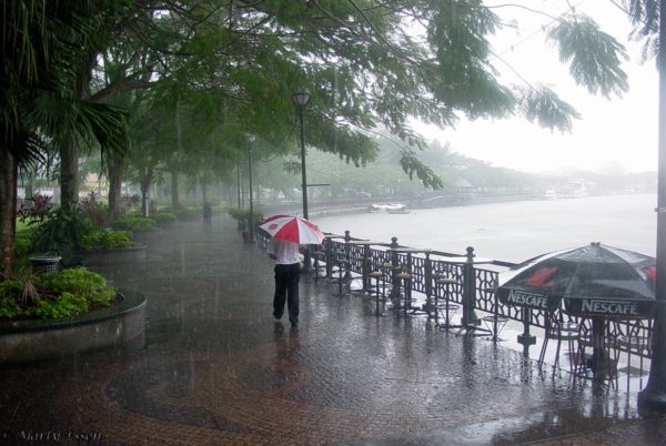 The rain in Borneo . .  .